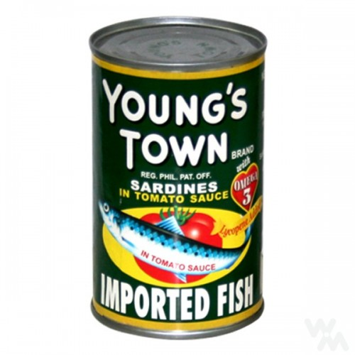 Young's Town
